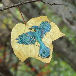 Blue Jay Leaf