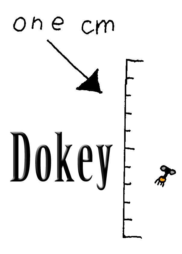 Dokey