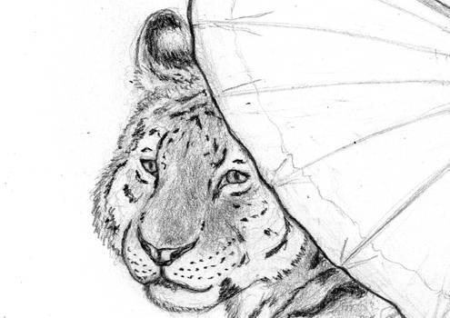 Preview: Tigress