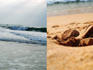 Ocean is inside of you