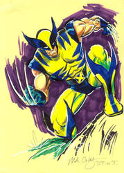 DTWT WOLVERINE by mikecollins