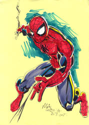 DTWTSPIDERMAN by mikecollins