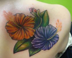 09.22.2010 hibiscus by koanodan