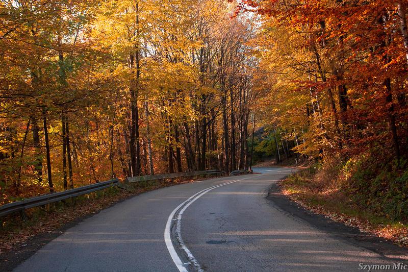 Autumn road 1 by SzymonMic