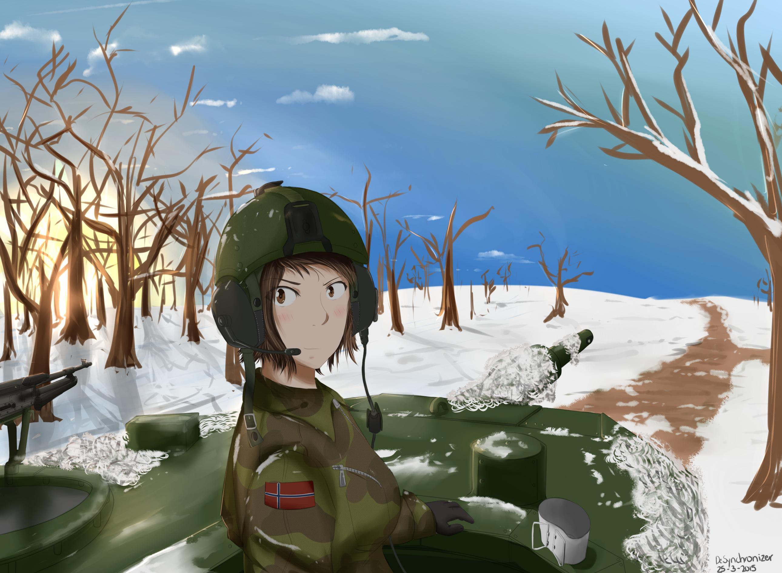 Request: Norwegian Panzer