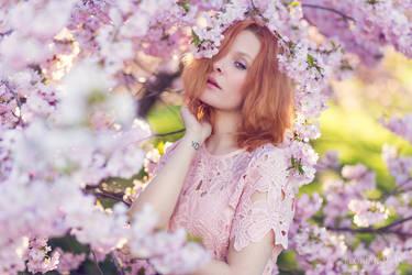 Sakura by KittiraCatinka