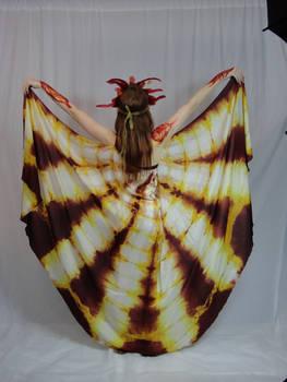 The Elementals - Firebird 18