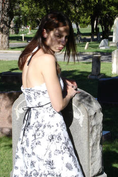 Shadows in the Graveyard 2