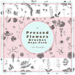 Stock - Pressed Flower Brushes