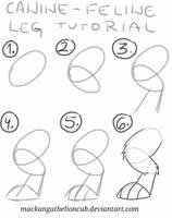 Canine-Feline back leg tutorial by Mackanga
