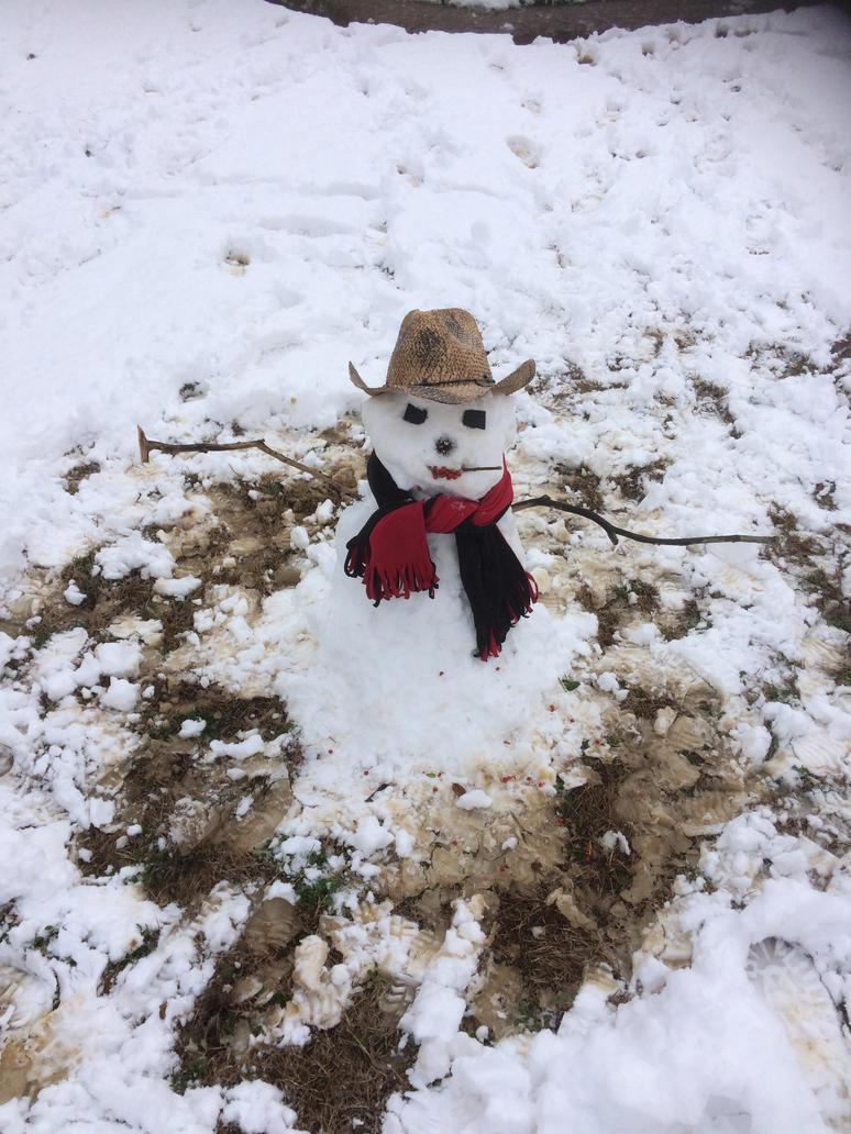 Snow Cowboy by saber360