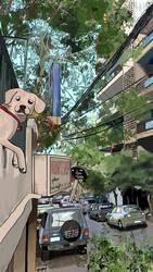 Dog balcony scenery
