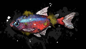 Colourful fish experiment