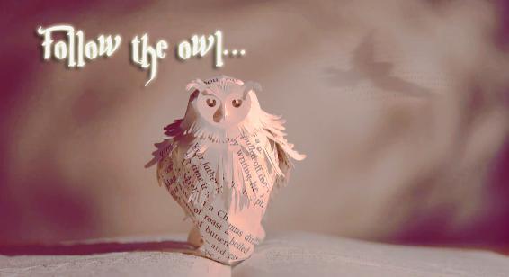 Follow the owl by Malfoyindahouse
