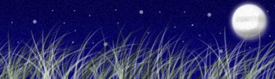 Starry Night of Dreams by Arwym