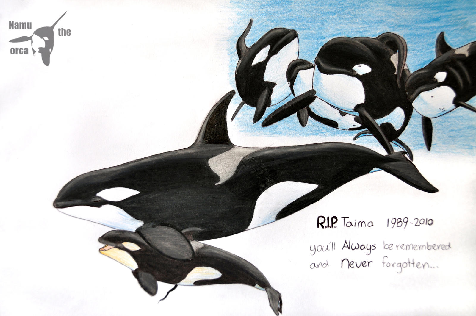 Always remebered...  -Taima by namu-the-orca
