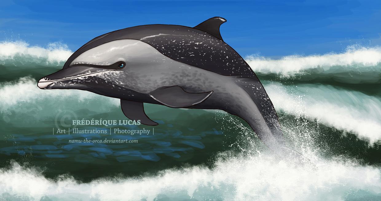 An ocean journey by namu-the-orca