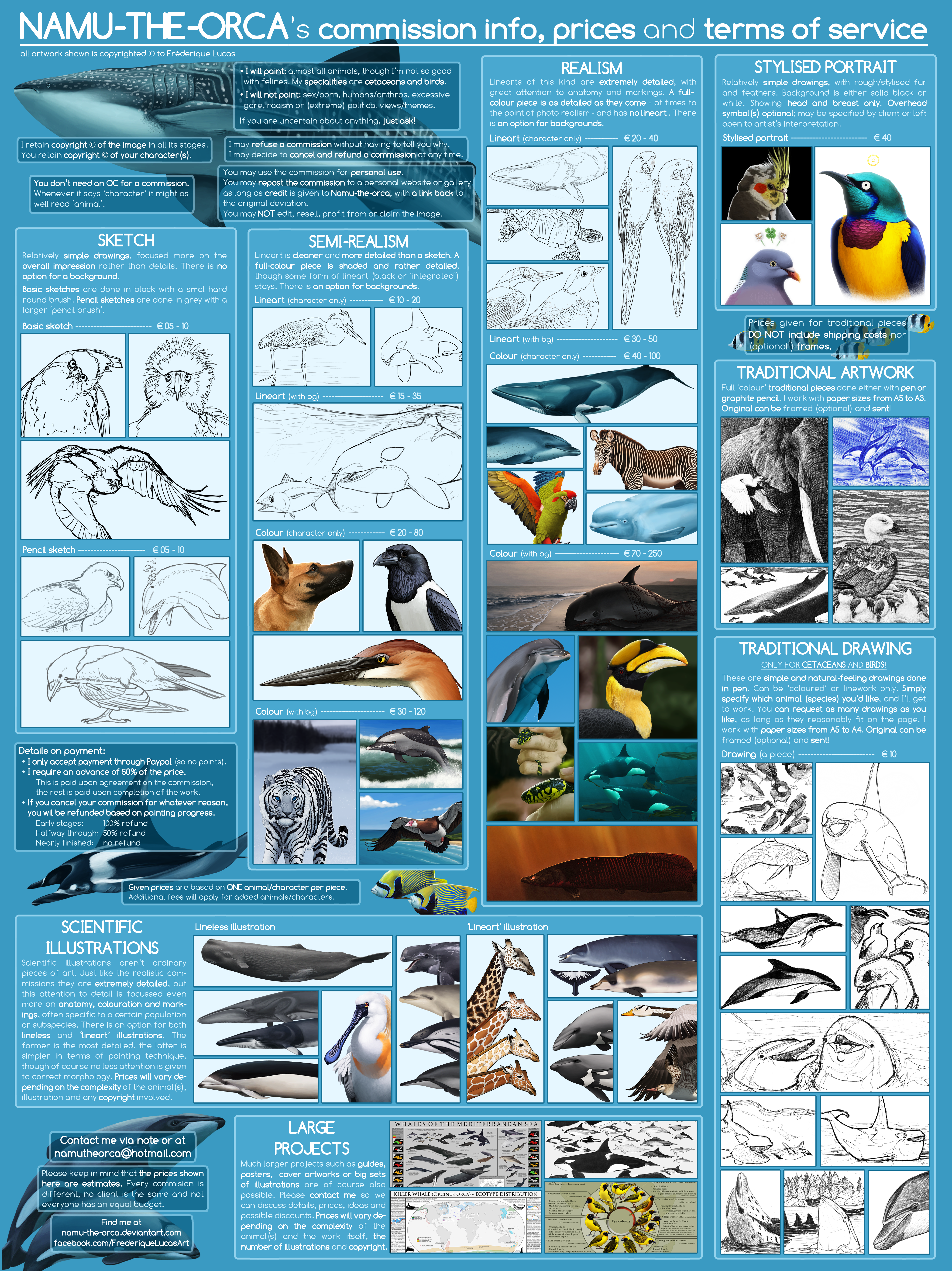 NAMU-THE-ORCA's commission sheet (updated) by namu-the-orca