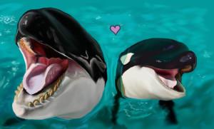 namu-the-orca's Profile Picture