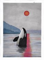 Burning Sun by namu-the-orca