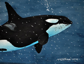 Raining bubbles by namu-the-orca