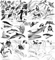 Namu's sketchbook part 6 by namu-the-orca