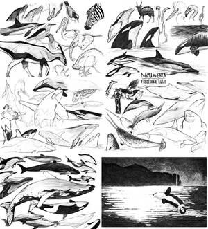 Namu's sketchbook part 8