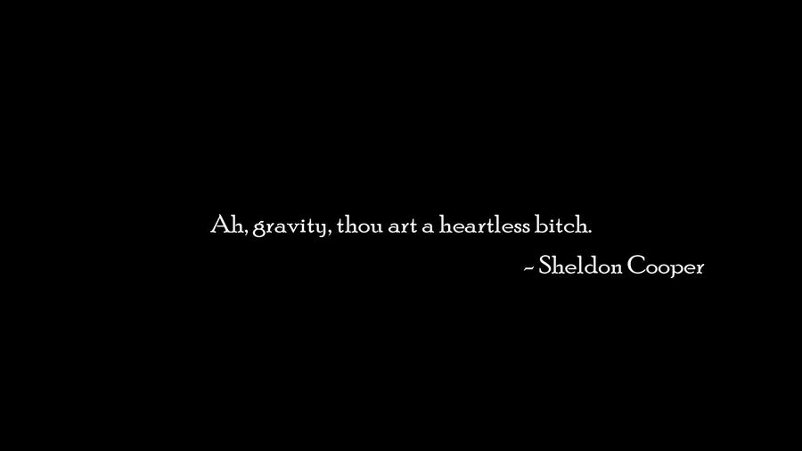 Sheldon vs Gravity by Wcreates