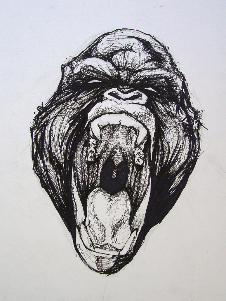 Gorilla Face Line Drawing : Angry screaming gorilla face drawing