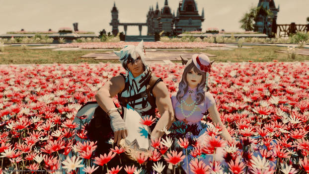 Frost and Victoria in flowers
