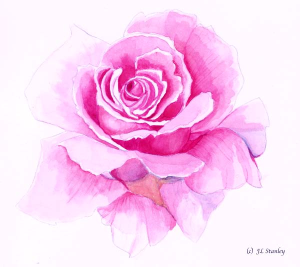 Tattoos on pinterest for How to paint a rose in watercolour