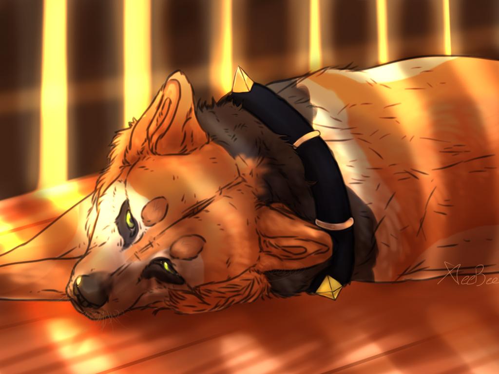 Sleeping in a shed by xeebee