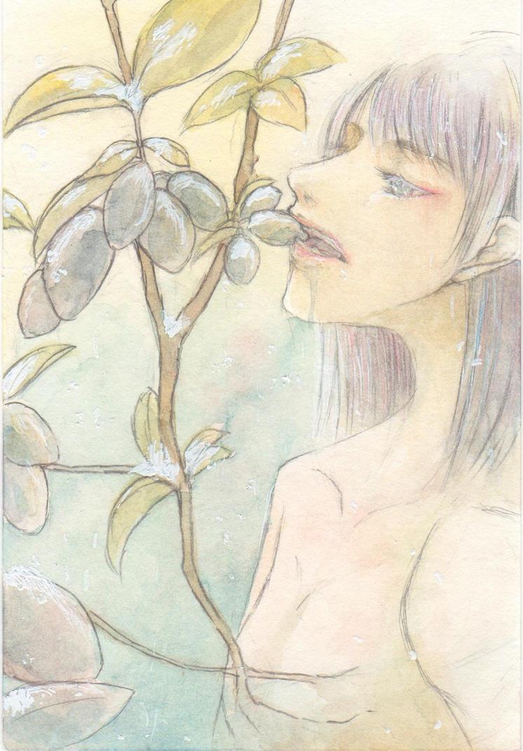 Lonicera caerulea by AkihikoArakawa