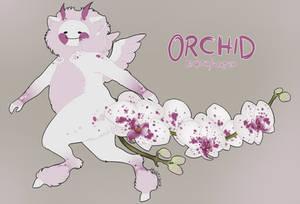 Pupuko MYO - Orchid by men0ni