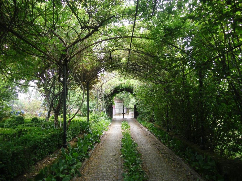 Chemin vers le portail