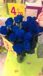 Roses bleues by LiliPoun