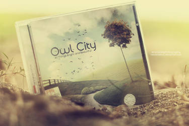 Owl City CD Cover by nelulanddsck