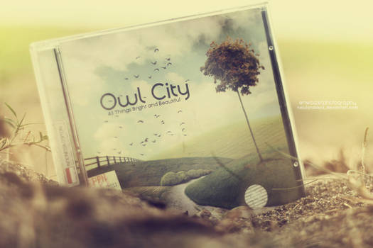 Owl City CD Cover