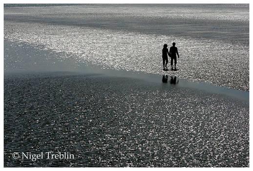Walk in the wadden sea