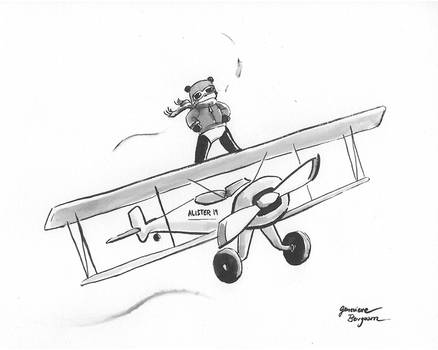 Aeronautical Panda (wind)