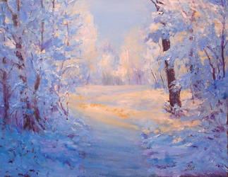Winter path. by herrerojulia