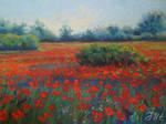 Poppy landscape. 2 part.