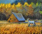Autumn meadow.