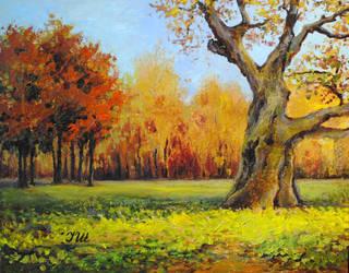 Old Oak. by herrerojulia