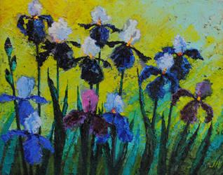 Irises. by herrerojulia