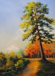 The Pine. by herrerojulia