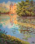 Lily's pond.