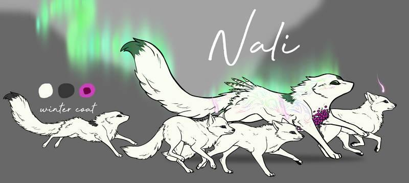 Naliref2