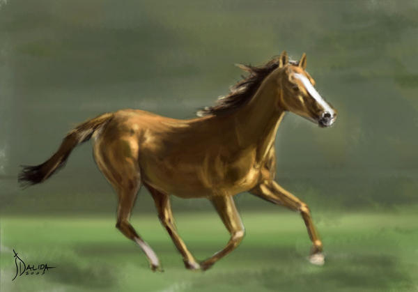 Horse Speed Painting by jickersdalida