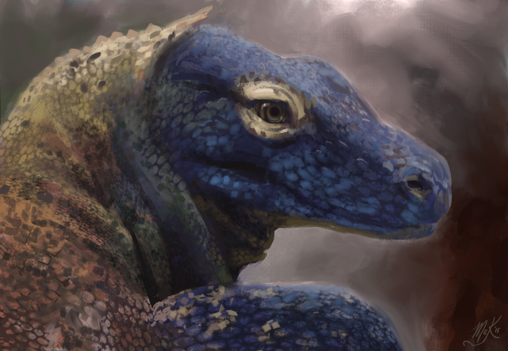 Komodo Dragon Study by DM7